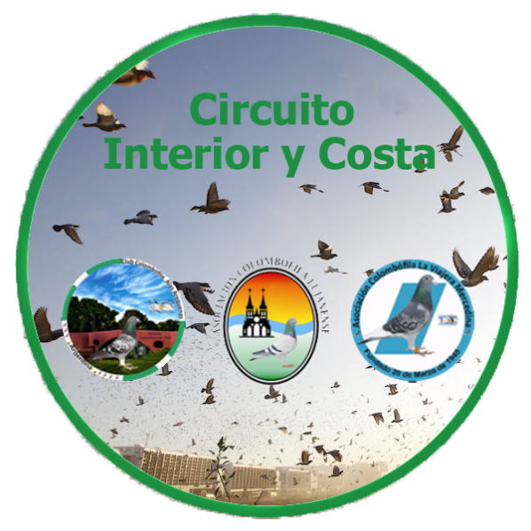Circuito Interior y Costa - Region 7
